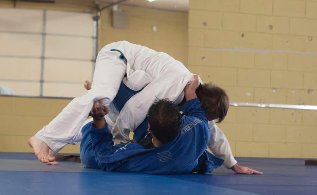 Judo influences in Krav Maga