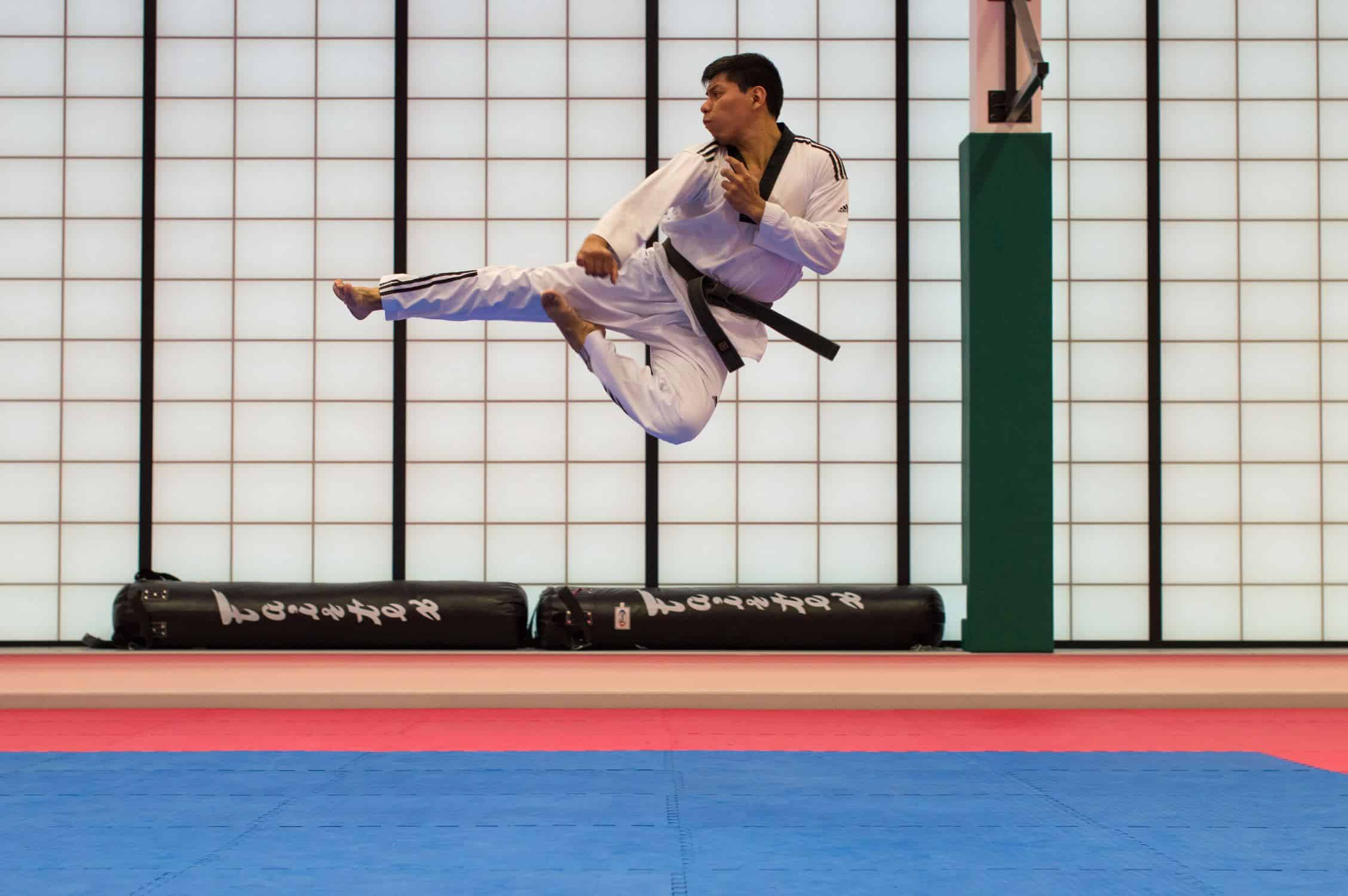 Karate influences in Krav Maga