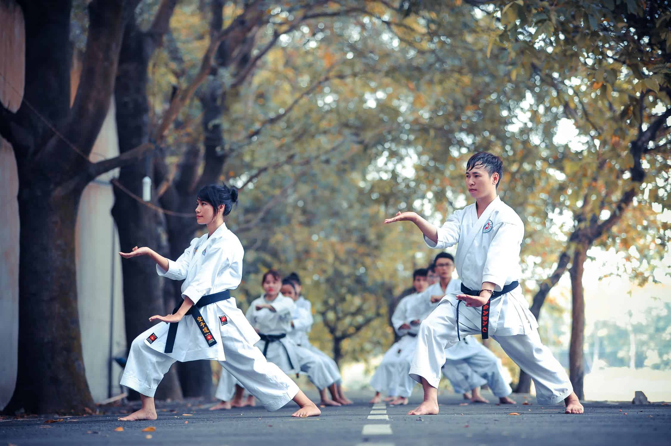 Krav Maga Vs Karate Vs Aikido Which Is Best The Martial Way