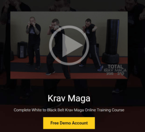 13 Do's and Dont's of Online Krav Maga Courses | Best