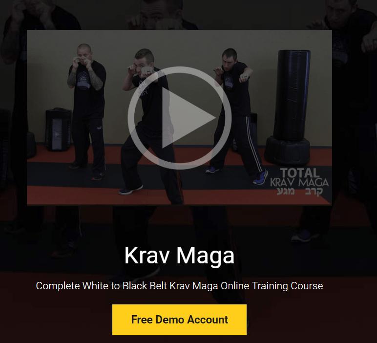 one of krav maga courses