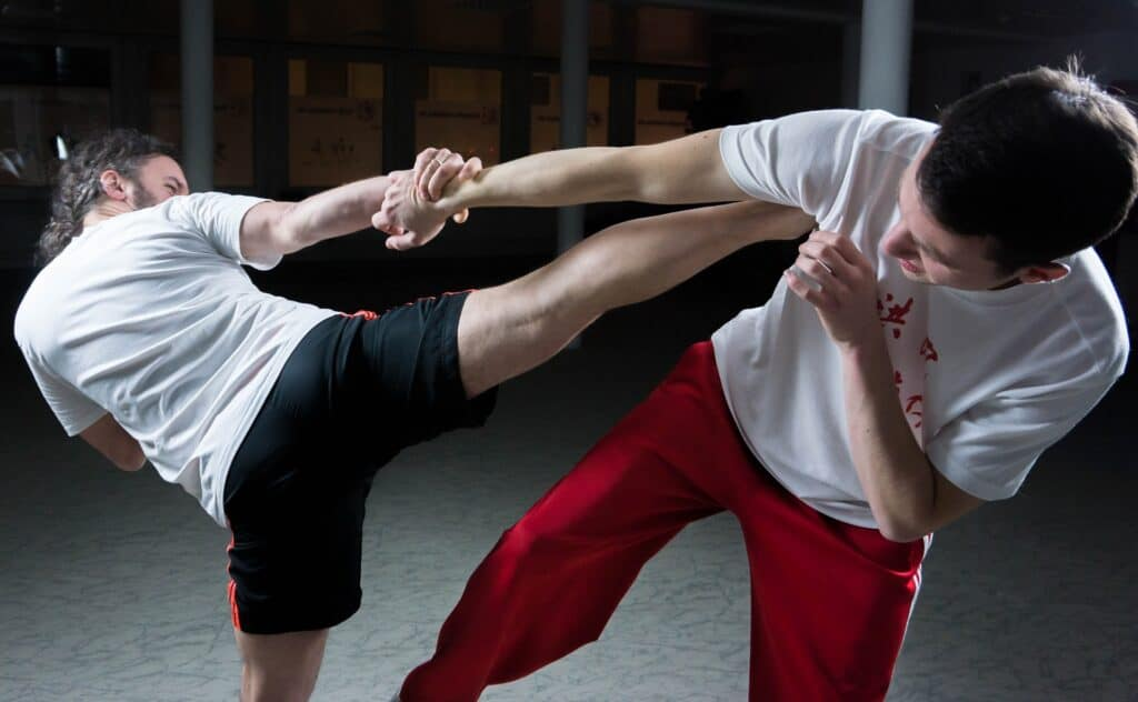 two person is exercising kungfu
